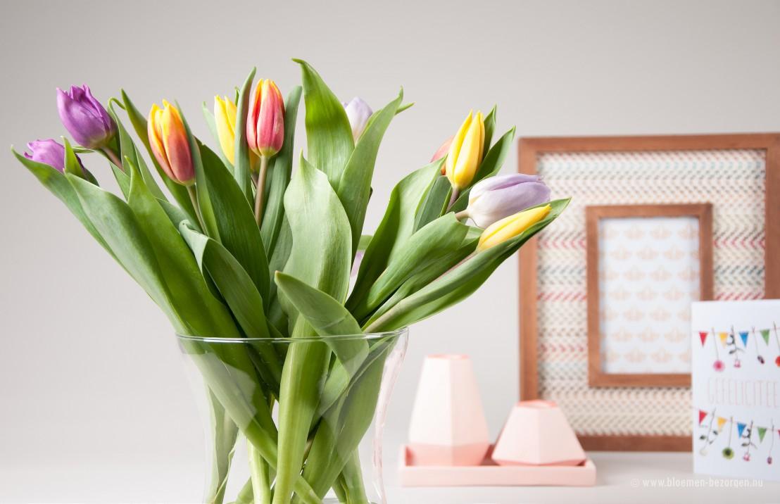 Tulpen op vaas gekregen via brievenbuspost