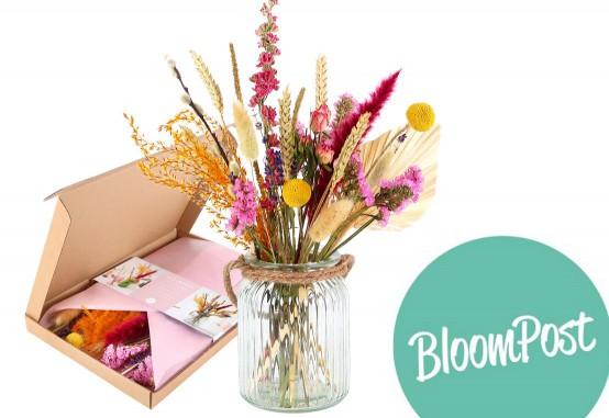 Bloomposy droogboeket bestellen in een brievenbusverpakking