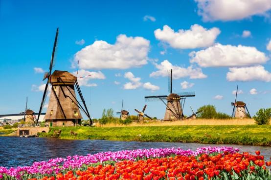 Molens en tulpen in Nederland