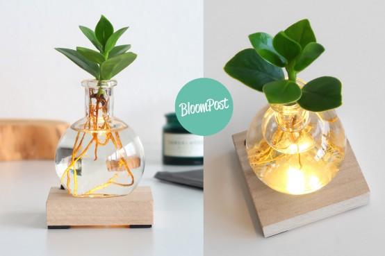 Lichtplantje Bloompost cadeau geven